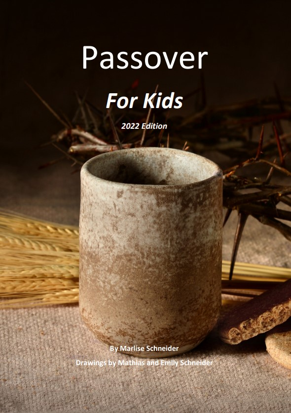 Passover-Themes-for-Kids_Cover.jpg